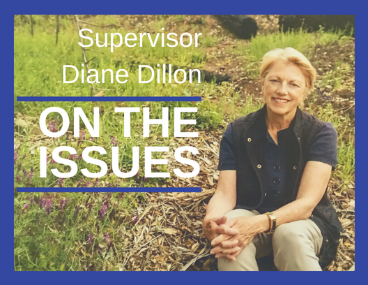 Diane Dillon On the Issues