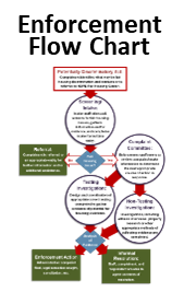 Enforcement Flow Chart: click image for larger view
